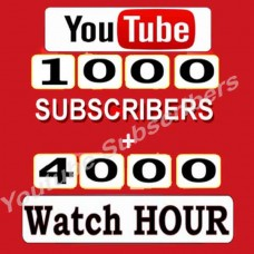 1000 Subscribers + 40000  Watch Hours - Youtube Channel Monetization Service